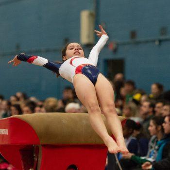 Introduction to Gymnastics game